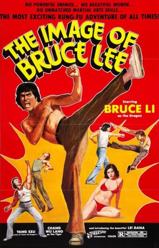 The Image Of Bruce Lee ( Download )