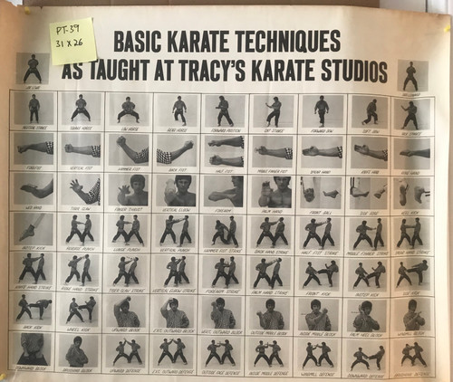 Tracy's Joe Lewis-karate techniques