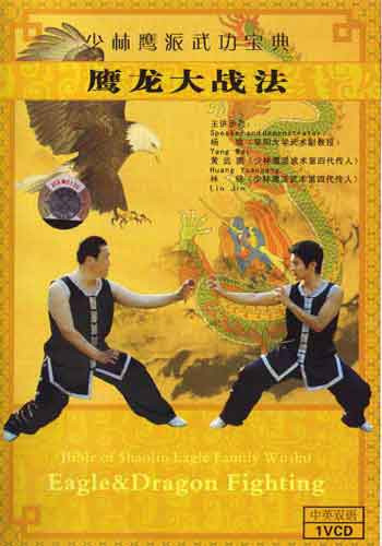 Eagle vs Dragon Kung Fu