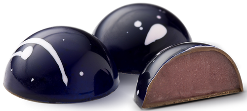 Fabbri Amarena Wild Cherry Gourmet Chocolate Bonbon