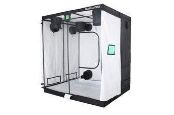 BUDBOX PRO GT-2 WHITE - 6'x7'x8' The whole BudBox Pro Grow Tent range is now equipped with steel, push & click fit connectors, which, in addition to the thicker tempered steel poles, provide greater load bearing strength for all your filters, fans and lighting requirements. BudBox is still the ONLY grow tent that takes the time and care to powder coat our poles and connectors, delivering the best possible anti-corrosion protection and a very clean and reflective look. Our philosophy at BudBox is and will remain the cornerstone of our success and is not open to negotiation or compromise, WE USE THE BEST THERE IS ! All the component parts used in the construction of BudBox Grow Tents are sourced, tried & tested and are guaranteed safe for plants and people to use. Maintaining a proper growing environment is crucial for a successful, high-yielding grow. Indoor growing tents provide a convenient way to isolate your growing area so you can maintain proper temperature, humidity, light and odor containment while keeping out dust and insects. BudBox grow tents are the newest, highest-quality, sturdiest tents we've used- and over many years of indoor growing, we've tried them all! Featuring the first white interior we have seen, easy assembly, easy access, sturdy frames to hold lights, filters and fans, the BudBox tents are the best way to create a self-contained environment for your indoor garden and maximize yields. A gorilla could hang from these grow tents! BudBox Grow Tents have been, and remain, the most trusted name in the indoor grow tent market since its inception 15 years ago! They've been in the industry for over 15 years for a reason! BudBox continues to manufacture and supply high quality, tried, tested & trusted grow tents to both the professional & hobbyist grower.   FEATURES - Pro White material offers class leading PAR results - ALL sizes available in either Pro White or Silver - Strong, black powder-coated frames in 16mm & 25mm tempered rolled steel - All m