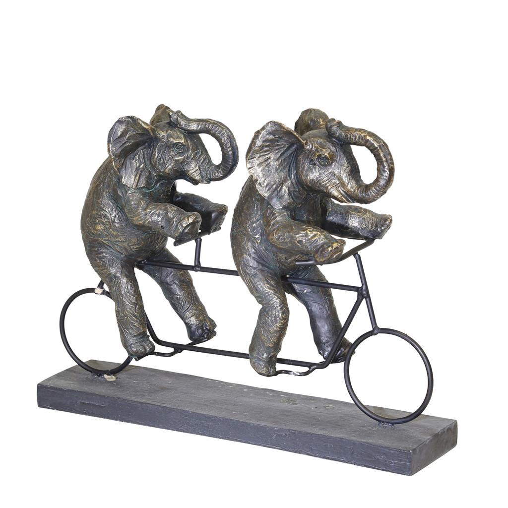 Safari Cyclists