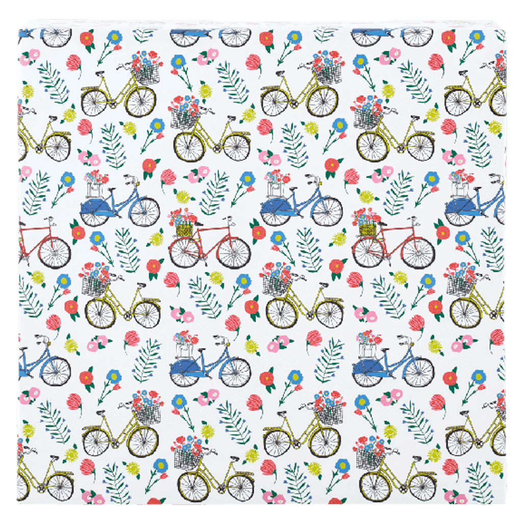 Ride in the Park Wrapping Paper Roll