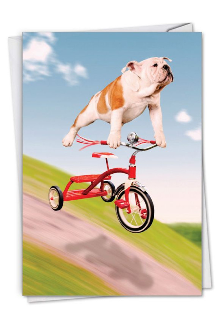 Dog on Tricycle Birthday Card