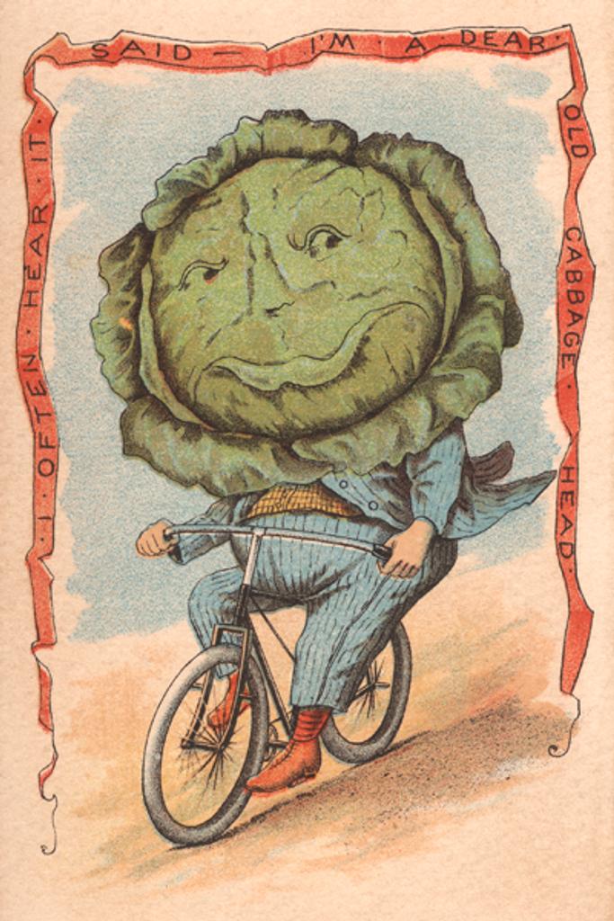 Cabbage Rider
