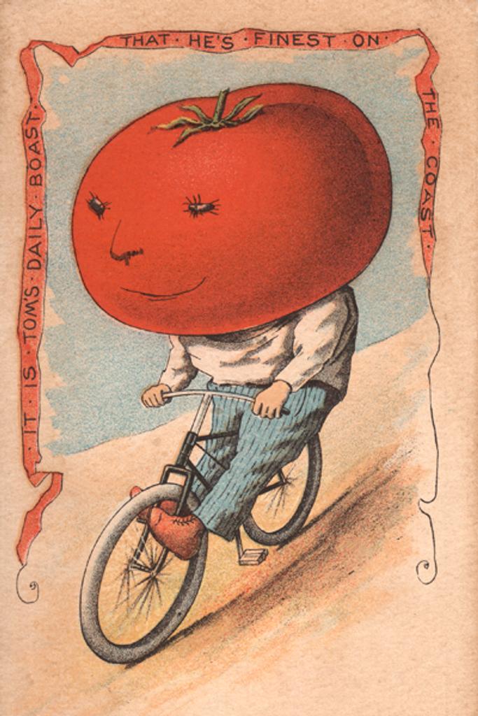 Tomato Rider