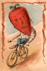 Beet Vegetable Rider Victorian Image Poster
