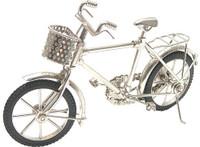 Desktop Cruiser Bike