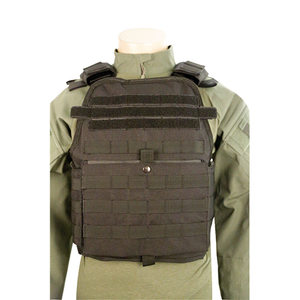 Bodyguard Plate Carrier - TSP-2808003