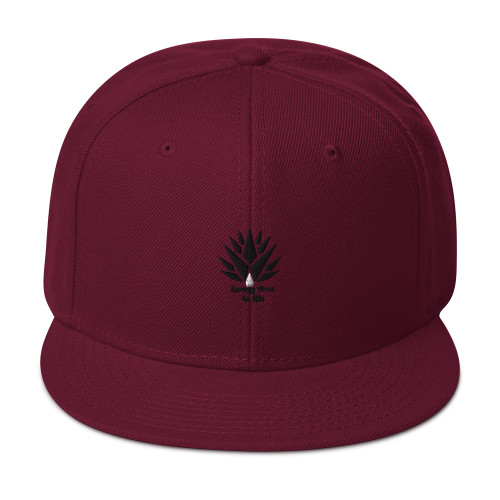 SC Graphic  3D Embroidery  Snapback Hat