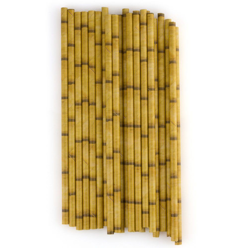 Bamboo Paper Straws - Pack of 24