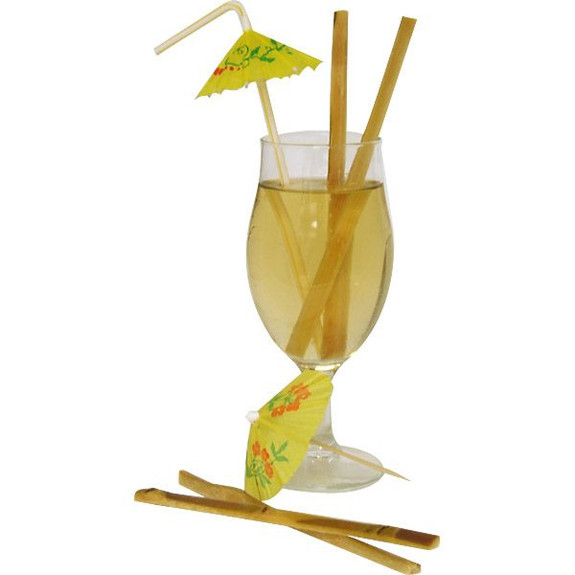 Raw Sugar Cane Swizzle Sticks
