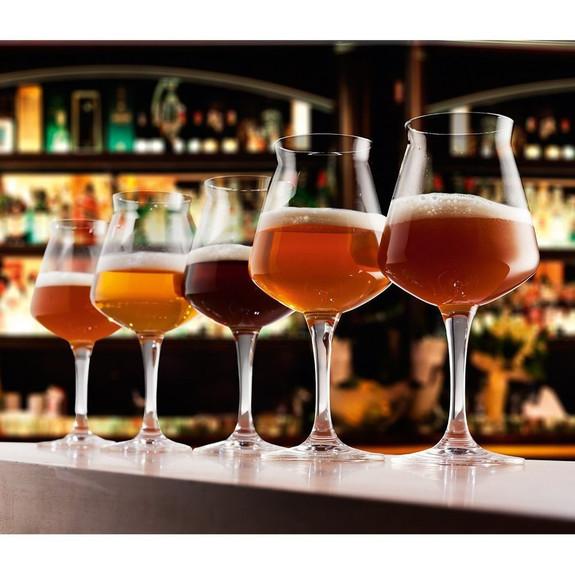 Rastal Teku Stemmed Beer Glasses - 2 Pack - 14.2 oz