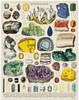 Mineralogie Puzzle