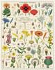 Wildflowers Puzzle