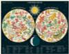 Constellations Puzzle