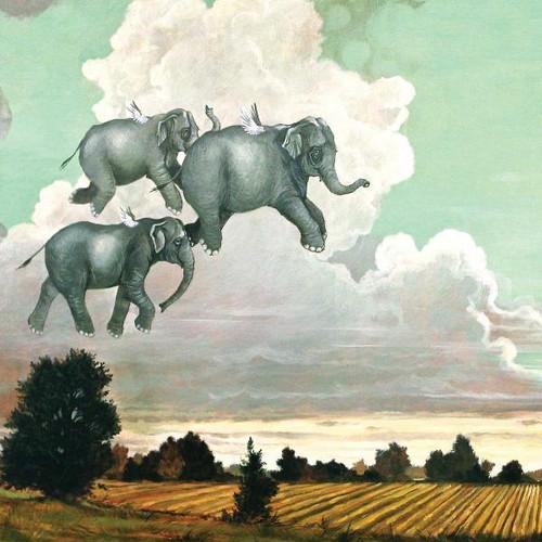 Flying Elephants Kids Puzzle