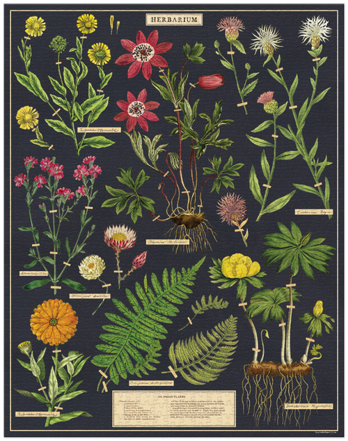 Herbarium Puzzle