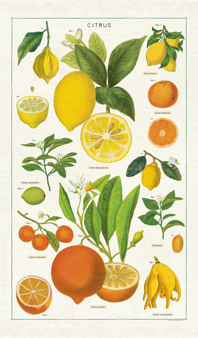 Citrus Vintage Tea Towel