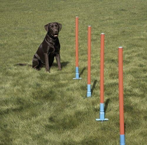 Easy Assemble Dog Pet Agility Slalom With 5 Weaving Poles Fun Exercise.