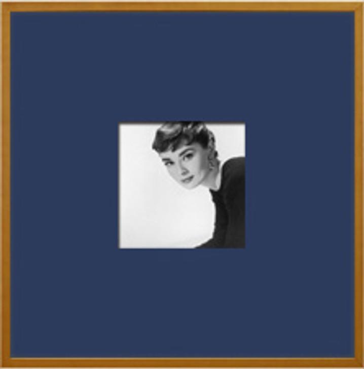 Audrey 1 - Picture