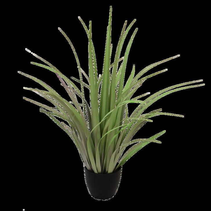 Light Green Reeds