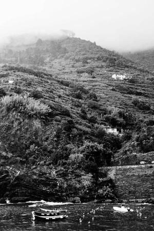 Cinque Terre, Italy Hillside BW