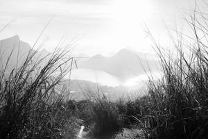 BW Landscape II