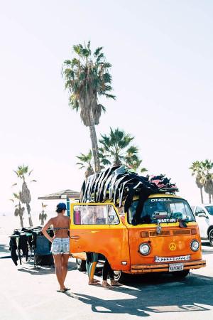 Beach Bum IV