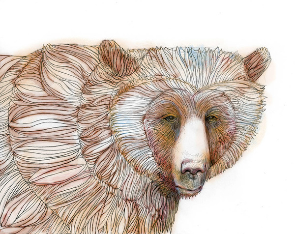 Colored Bear