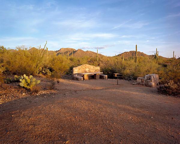 Saguaro AZ 2