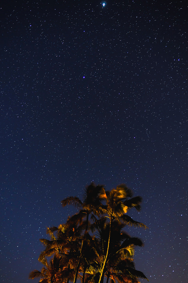 Stars in Paradise