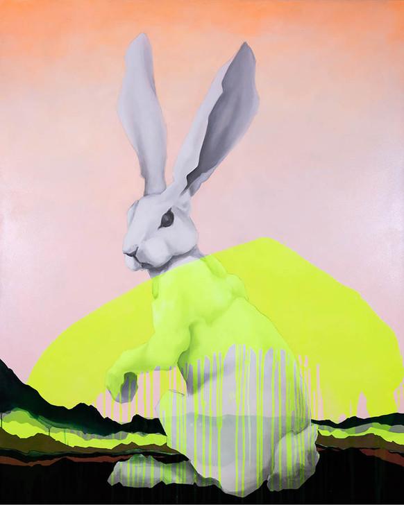 White Rabbit 4