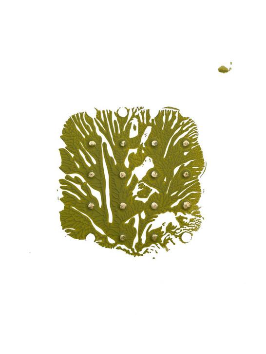 Green Golden Imprint