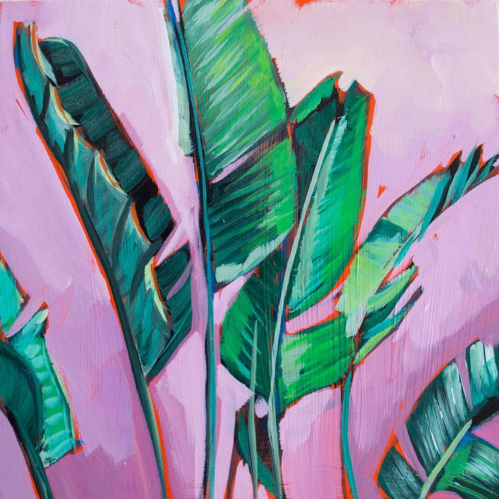 Palm Frans