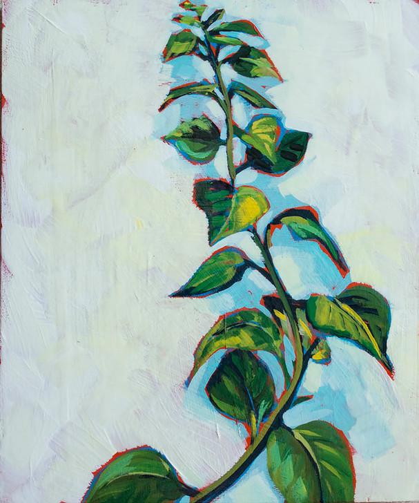 Vine Painting