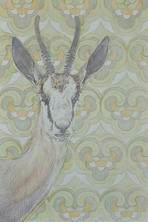 Gazelle Green
