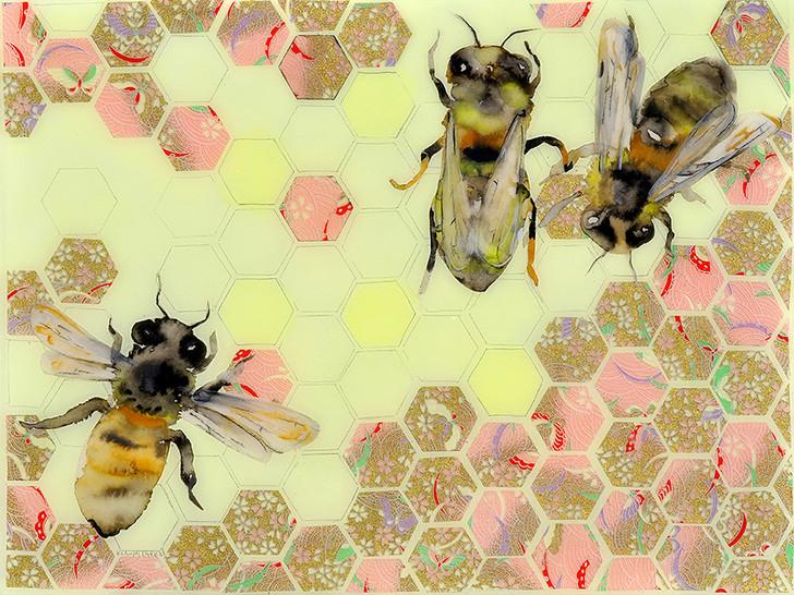 Honeycomb l Enlarge