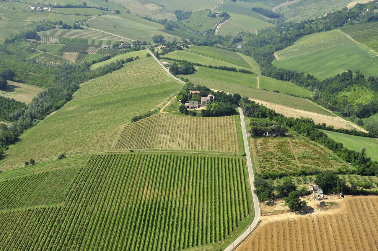 Petrignone Estate