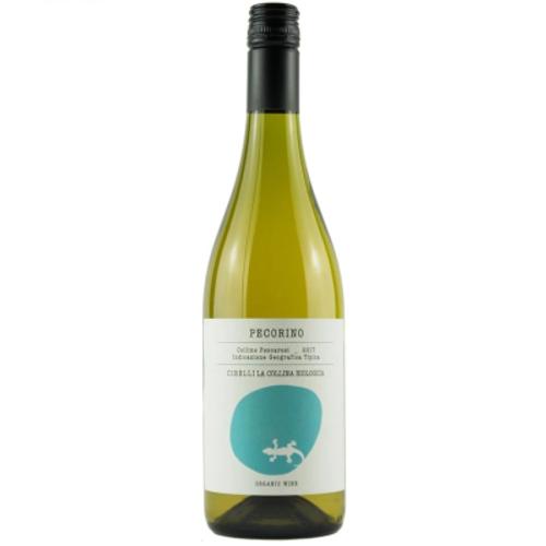 Abruzzo White Wine