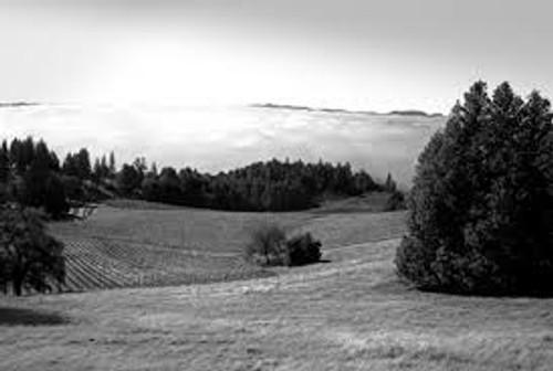 EDMEADES, 2014 Zinfandel, Mendocino