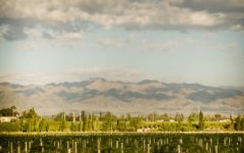 ARGENTO, Chardonnay Reserva 2015