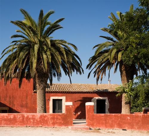 Planeta, Santa Cecilia, DOC Noto 2014