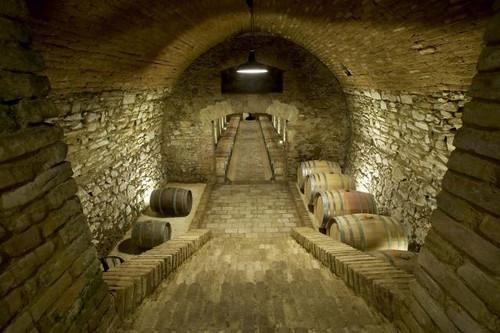 Wieninger cellar