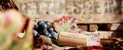 Barmes-Buecher,  Pinot Noir Vieilles Vignes 2009