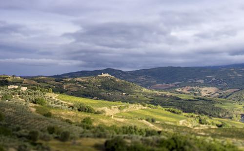 Ciacci Piccolomini d'Aragona, Brunello di Montalcino 2014
