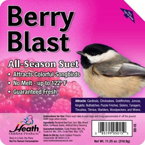 Suet Cake Berry Blast 11.25 Ounce