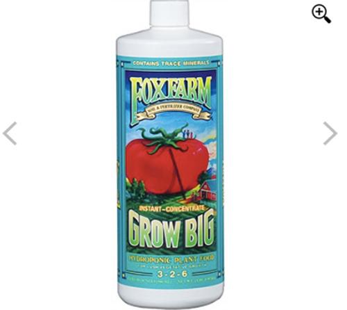 Grow Big Hydro Quart