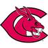 Central Missouri Mules