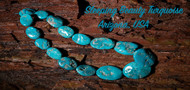 December Birthstone : Turquoise